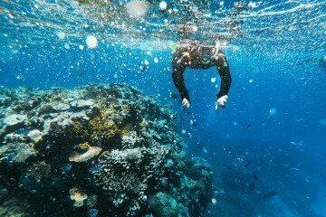 rondreis australie great barrier reef
